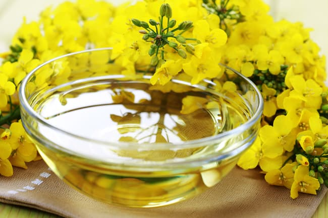 photo of canola oil