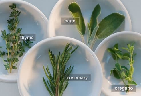 Thyme, Sage, Rosemary and Oregano