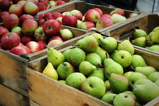 photo of apples and pears