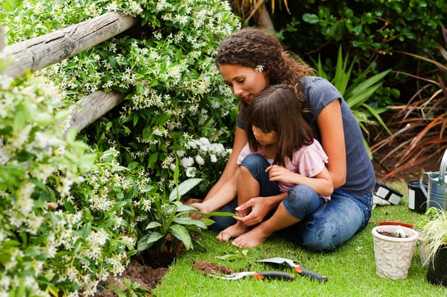 photo of family gardening`