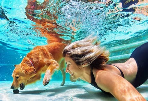 woman and dog in pool