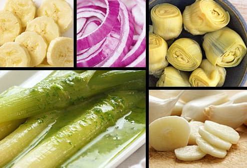 five panel prebiotic foods