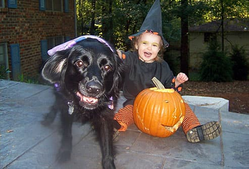 Black dog and child as witches