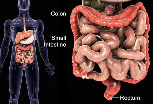 diagram showing ibd attack area
