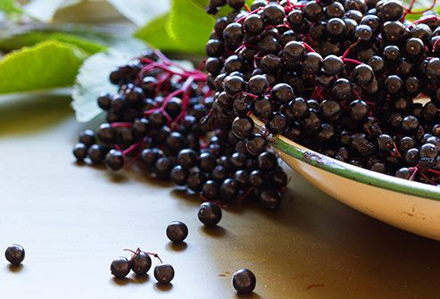 Immune-Boosting Foods: Berries, Oysters, & More in Pictures