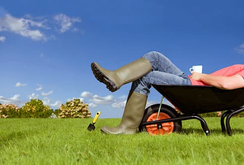 Man relaxing in a wheelbarrow while gardening