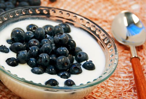 Bowl of Yogurt with Blueberries