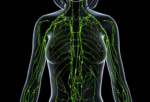 woman lymphatic system