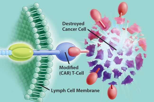 photo of car t cell therapy