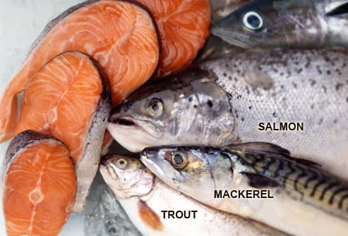 Image result for salmon mackerel and fish with omega-3s