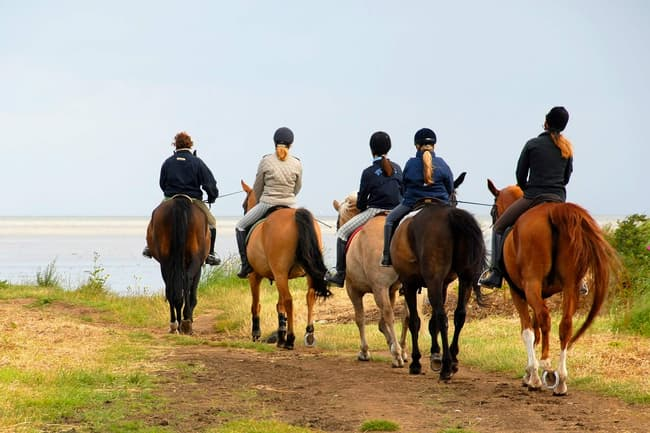photo of group of people riding horses