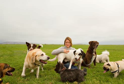Mature woman with several dogs in field