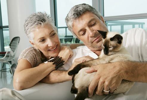 Mature couple with a cat