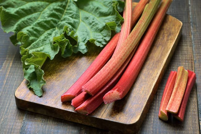 photo of rhubarb