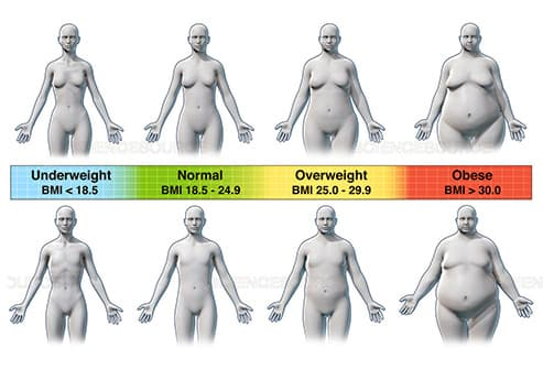 bmi body mass index illustration