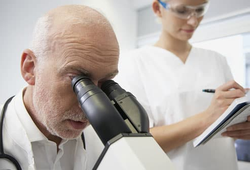 Doctor Analyzing Scabies Sample
