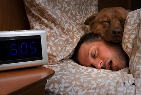 man sleeping with dog