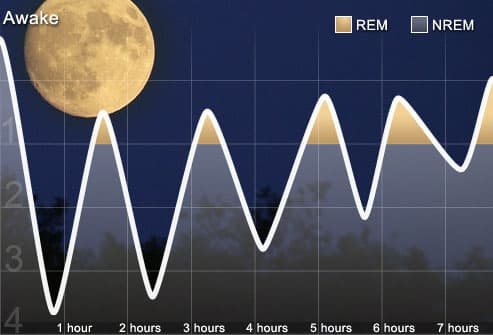 sleep disorders pictures rem nrem sleep cycle graphs keeping a rh webmd com