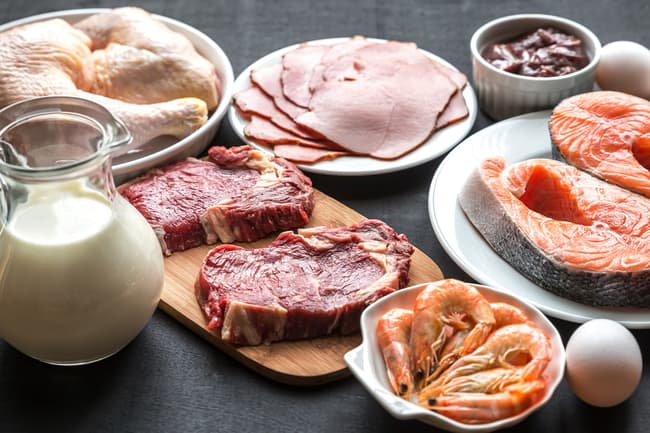 photo of fish, meat, eggs and milk