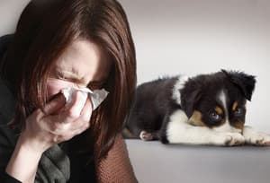 Sick Woman with Dog