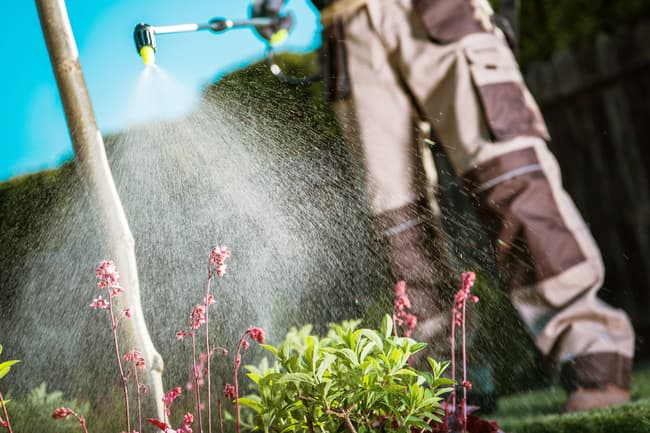 photo of man spraying pestisides