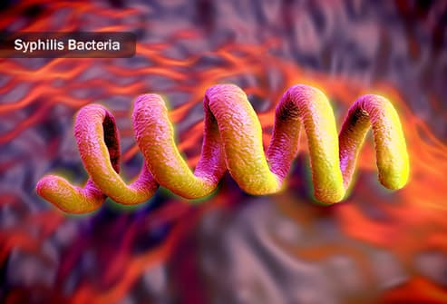 syphilis bacteria illustration