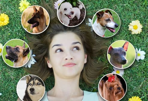 Woman Surrounded By Dog Faces
