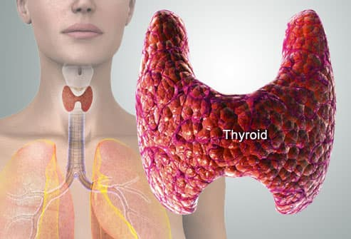 Thyroid Symptoms Pictures Fatigue Weight Gain Hair Loss More