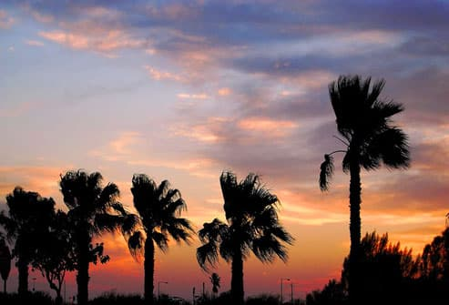 Sunset in McAllen, Texas