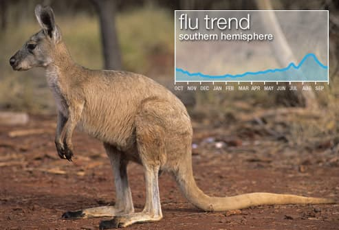 Flu Trends In Southern Hemisphere