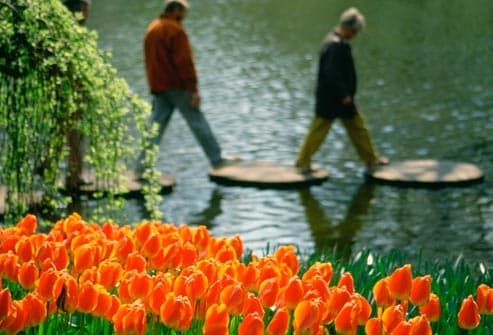 couple walking by tulips