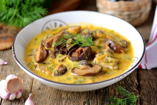 photo of mushroom soup