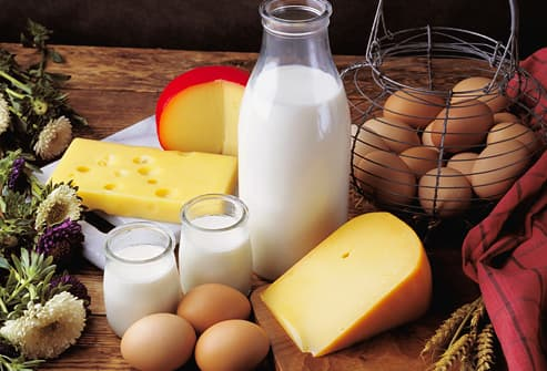 Still life with eggs and dairy