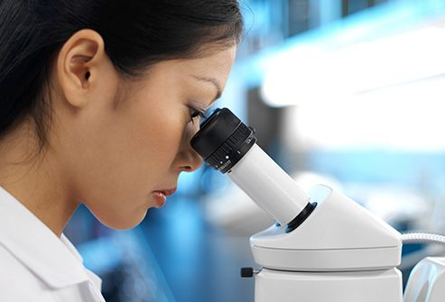 medical researcher using microscope