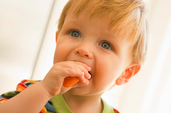 photo of young boy eating carrot