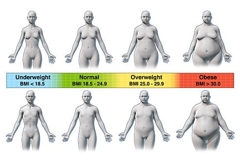 bmi index illustration