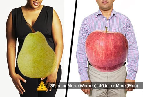 female and male body shapes