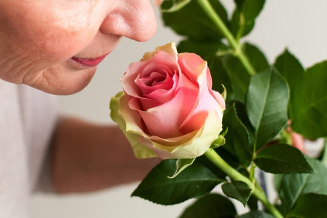 mature woman smelling rose