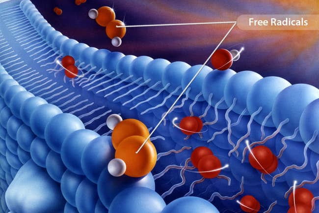 photo illustration of free radicals
