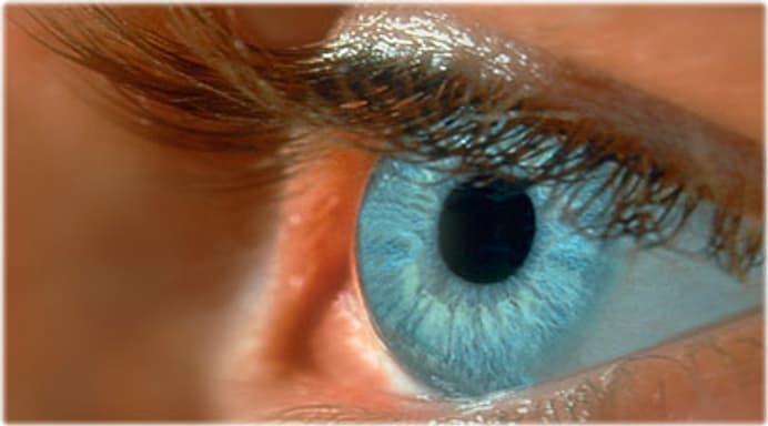 Eye and Vision Quiz: Is Your Eyesight Worsening? About