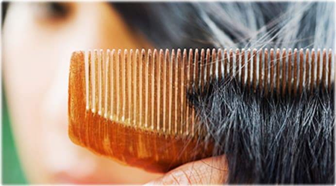 What Causes Hair Loss And Will Hair Grow Back
