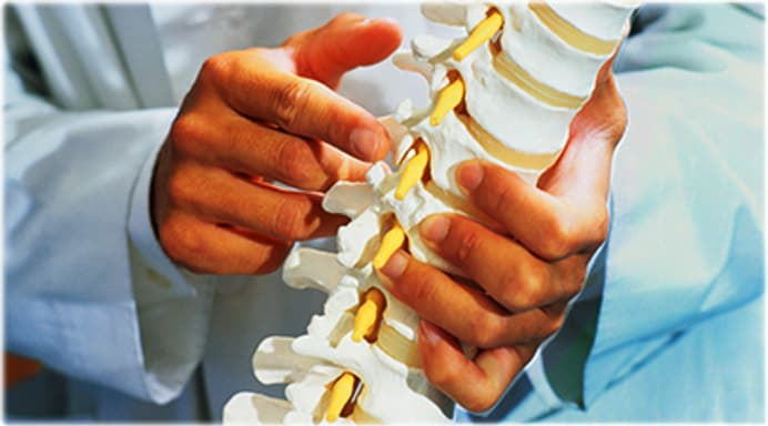 Spine Quiz: What to Know About Your Backbone