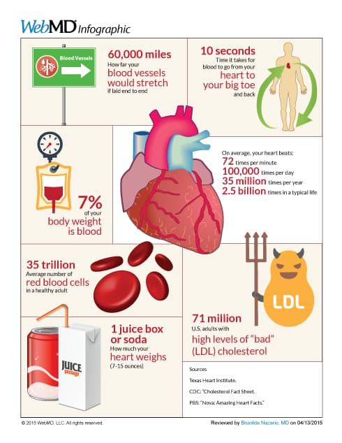 Keep Heart Healthy Infographic